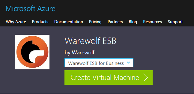 create  Warewolf ESB virtual machine on azure